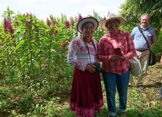 Lucinda Duy Quishpilema's report on her Mexico Amaranth trip
